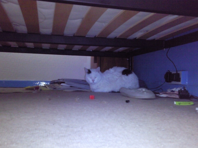 jack under my bed